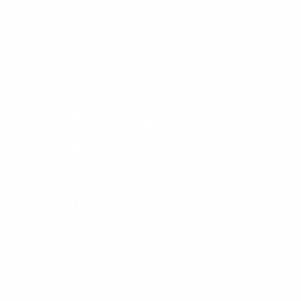 Connecting Resilience